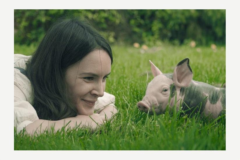 """Filmszene aus """"Los Veganeros"""""""