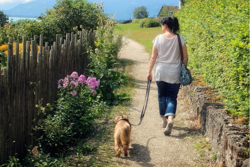 Eine Frau führt ihren Hund aus