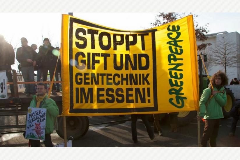 """Auf der """"Wir haben es satt""""-Demo am 18.01.2014 in Berlin"""