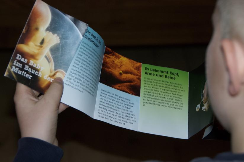Ein Schüler liest den Flyer, den die Kinder bei der Körperwunderwerkstatt mit nach Hause nehmen konnten.