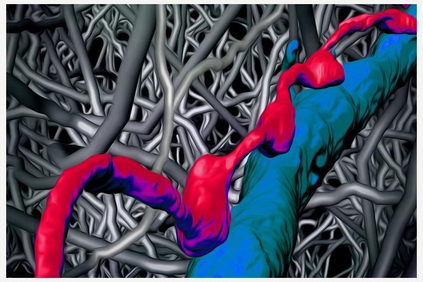 neuronales Netzwerk der medialen entorhinalen Hirnrinde
