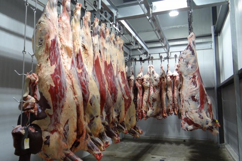 Rinderhälften in einem Kühlhaus