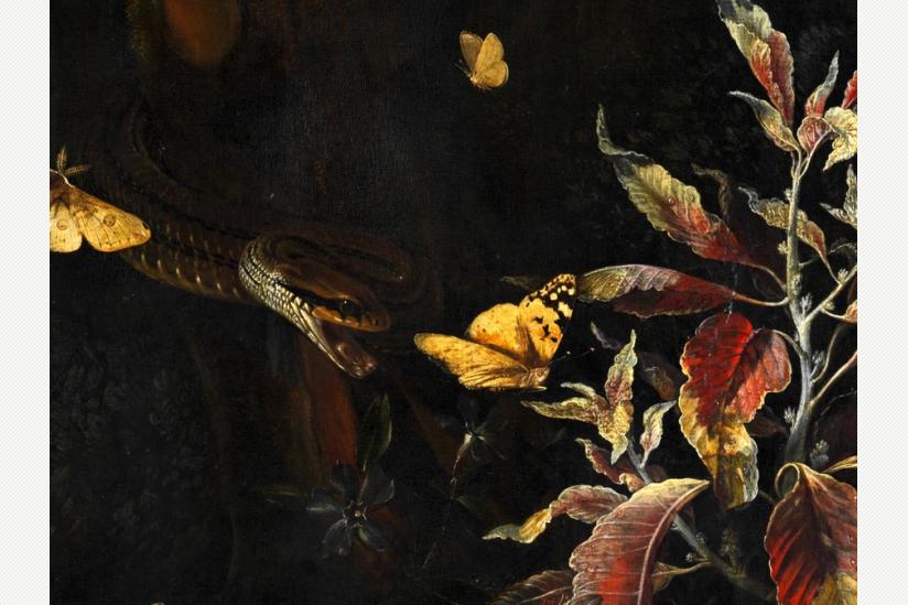 Otto-Marseus van Schrieck - Schmetterlinge und Blumen - 1675 - Detail