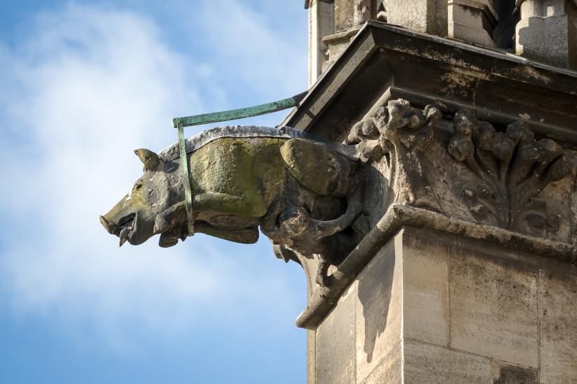 """Auch am Kölner Dom gibt es eine """"Judensau"""" als Wasserspeier."""