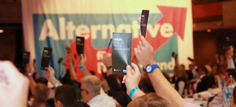 Abstimmung bei der AfD