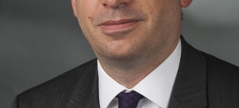 Niels Annen (2014)