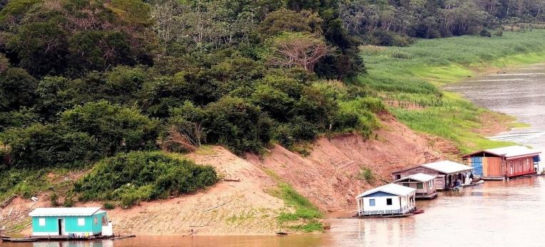Im brasilianischen Urwald