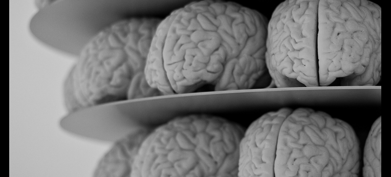 Gehirne