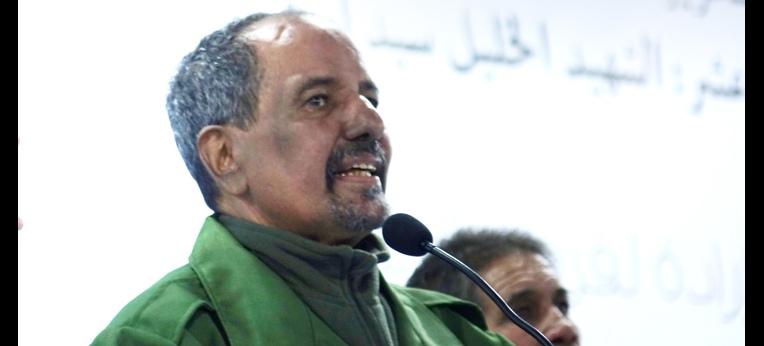 Mohamed Abdelazis