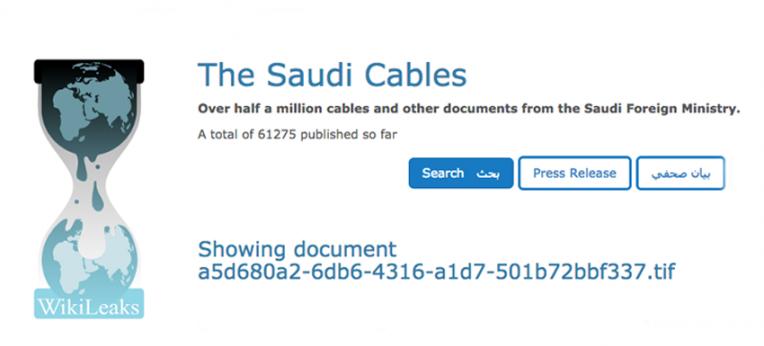 Screenshot Wikileaks