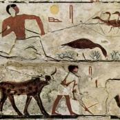 Relief in der Grabkammer des Nefermaat