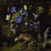 Otto Marseus van Schrieck - Waldboden mit blauen Winden und Kroete -1660
