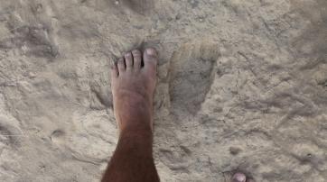 Der fossile Fußabdruck ist von dem einen modernen Menschen kaum zu unterscheiden.