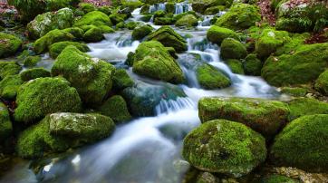Quellwasser kann kontaminiert sein