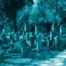 Kindergräber auf dem Neuen Jüdischen Friedhof in Nürnberg