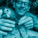 Mit dem Beobachtungssystem Icarus können Wissenschaftler die Bewegungen von Tieren rund um den Globus verfolgen